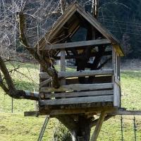 On Solo Retreats and Opercula