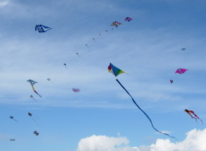 2013 Whidbey Island Kite Fesitval